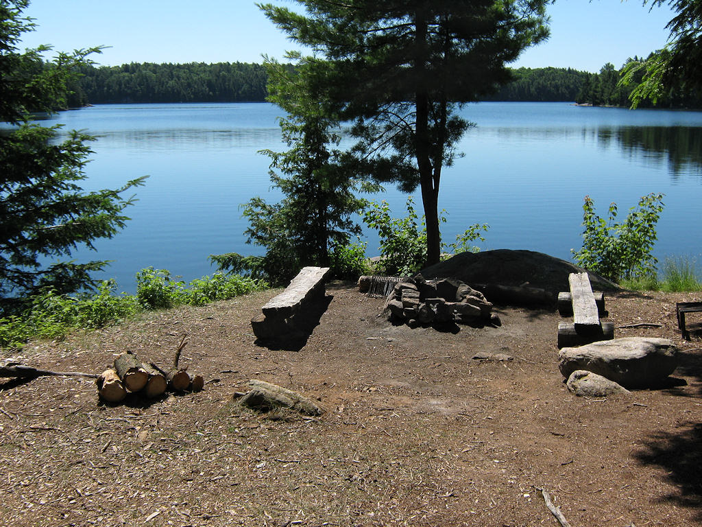 The Friends Of Algonquin Park Email Double Your Donation